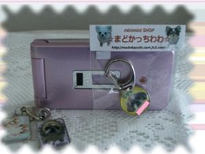 Photo_2_6