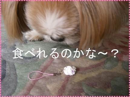 Photo_8_2