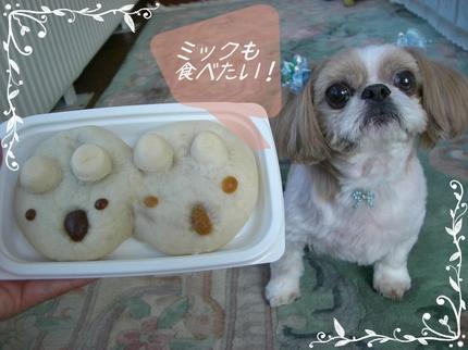 Photo_4_7